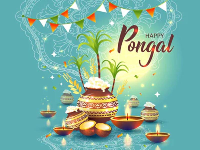 Pongal 2021 Wishes in Hindi: ये शानदार मैसेज भेजकर दोस्तों और रिश्तेदारों को दे बधाई