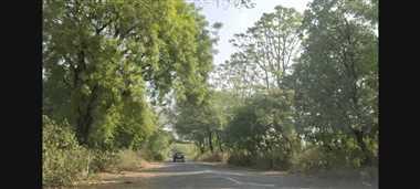 महाराष्ट्र की कंपनी करेगी उज्जैन-झालावाड़ रोड का चौड़ीकरण, जद में आएंगे कई पेड़