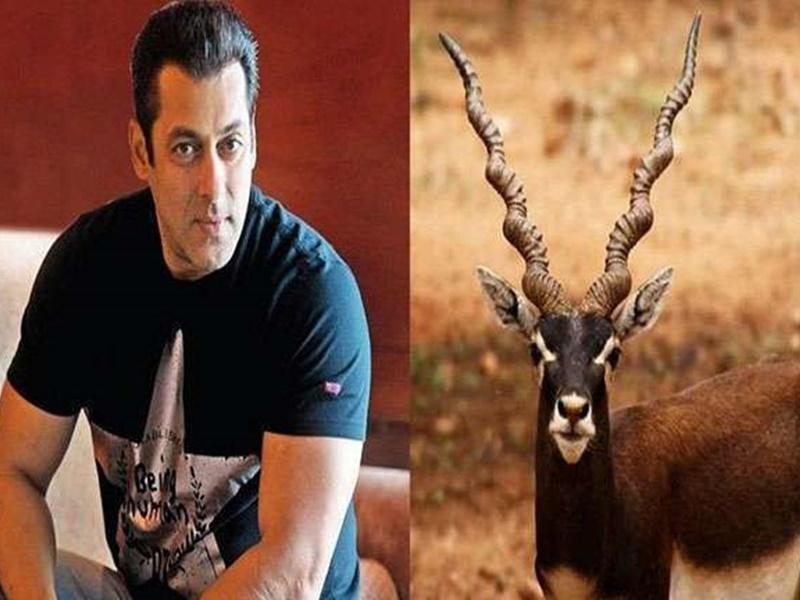 Rajasthan: काले हिरण शिकार मामले में फिल्म अभिनेता सलमान की याचिका पर टली सुनवाई