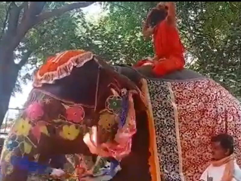 Baba Ramdev हाथी पर बैठकर कर रह थे योग, नीचे गिरे, मथुरा के आश्रम का Video Viral