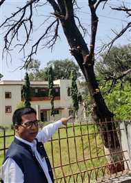 सर्किट हाउस और विक्रम विश्वविद्यालय के पेड़ों पर कुलपति ने खोजी मशरूम की प्रजातियां