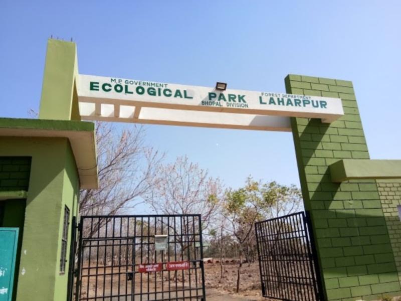 Bhopal News: चंदनपुरा में नया शहर वन अधर में, ईकोलॉजिकल पार्क का विस्तार भी अटका