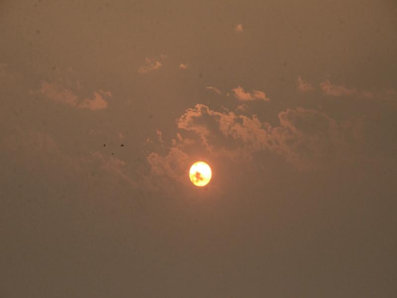 Gwalior Weather Report: शहर में गुलाबी सर्दी की दस्तक, रात हुई ठंडी, जानें आगे कैसा रहेगा माैसम