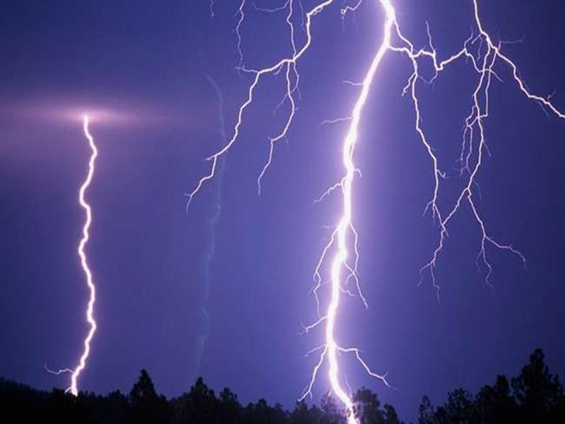 बारिश से बचने पेड़ के नीचे खड़े थे, बिजली गिरी और चली गई 3 जान