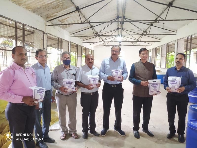 Jabalpur News: अनुसंधान के बाद बने नर्मदा मिन के उपयोग से पशुओं में दुग्ध उत्पादन, गुणवत्ता में वृद्धि
