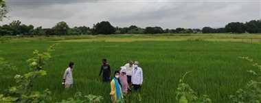 रीवा में रुक-रुककर दिन भर होती रही बारिश