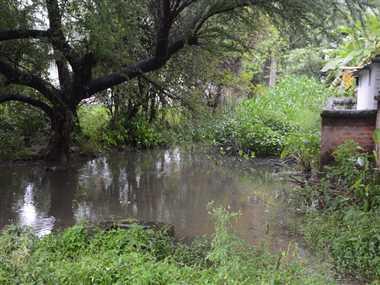 Bhilai Steel Plant News: बीएसपी आवासों के बैकलेन की सफाई नहीं, घरों में भरा पानी