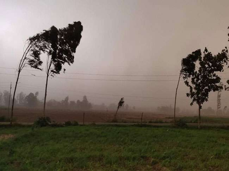 Weather in Madhya Pradesh : उत्तरी हवा चलने से रात में बढ़ी ठंड, जानिये कब से बढ़ेगी ठिठुरन