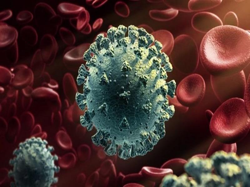 Coronavirus News Indore: कोविड रिपोर्ट नहीं आई, फेफड़ों में 80 फीसद संक्रमण, अस्पताल में बेड नहीं