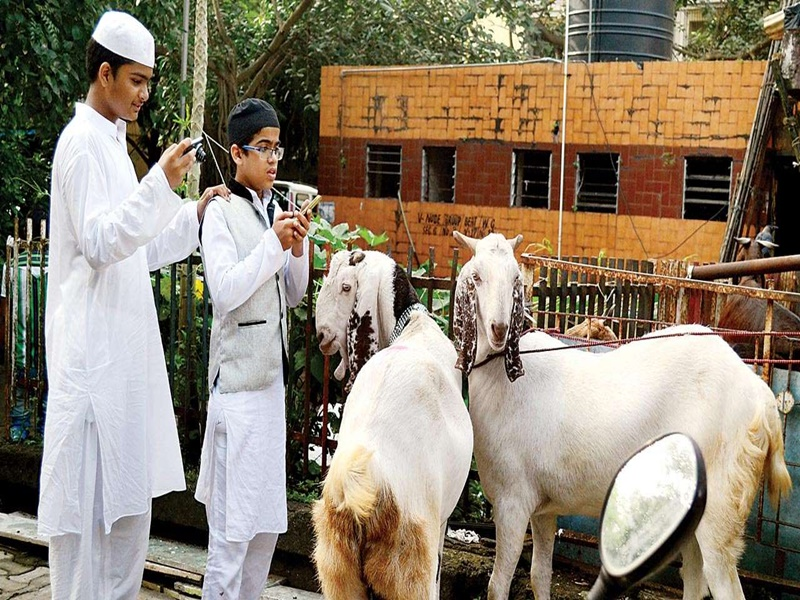 Eid-ul-Adha 2021 History: जानिए क्यों मनाई जाती है बकरीद, ऐसा है इसका इतिहास व इस्लाम में महत्व