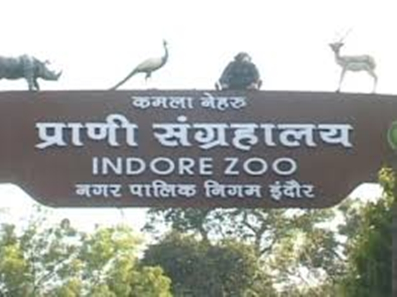 इंदौर चिड़ियाघर में दर्शकों को अब मिलेगा टचलेस प्रवेश, रविवार को अवकाश
