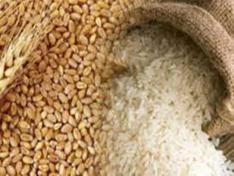 Anna Utsav in Madhya Pradesh: 37 लाख नए हितग्राहियों को एक रुपये किलो गेहूं-चावल