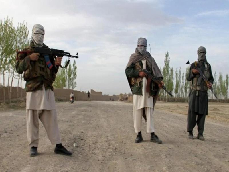 अफगान सरकार का बड़ा खुलासा, बीते 1 माह में मार गिराए 152 पाक आतंकी