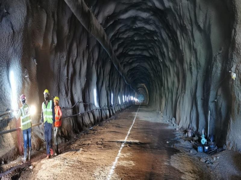 Bhopal Railway News: बाघ-तेंदुए की जान बचाने 20 अंडरपास व पांच ओवरपास का काम 50 फीसद पूरा