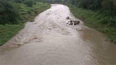 झमाझम से उफने नदी-नाले, कई रास्ते अवरुद्ध
