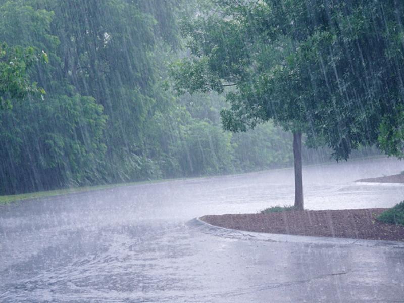 Weather Alert : इन राज्यों में अगले 48 घंटों में भारी बारिश की संभावना, IMD मौसम विभाग का अनुमान