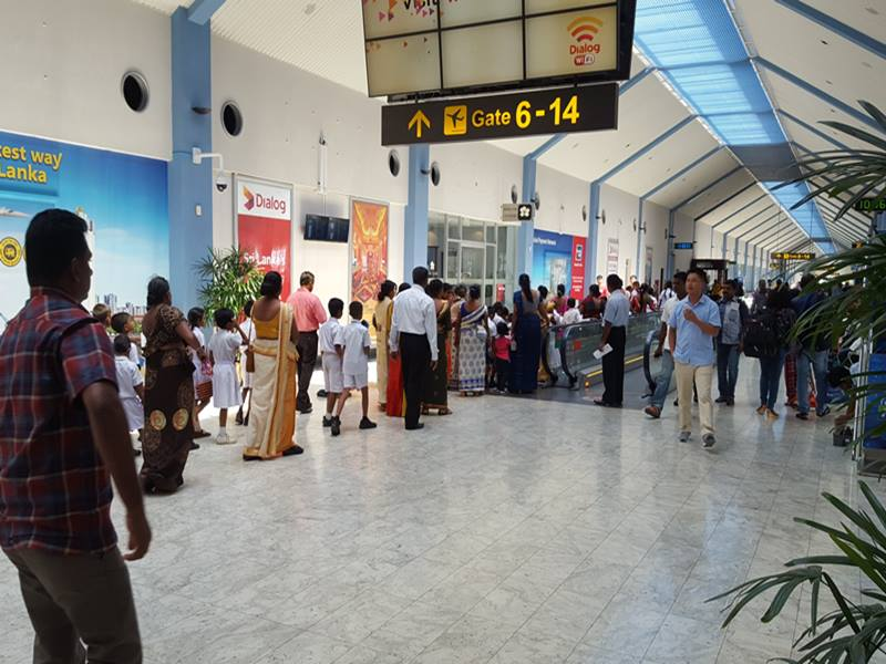श्रीलंका गए भारतीय वतन वापसी का कर रहे हैं इंतजार