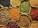 Indore Market News: Stocks of pulses and pulses to be announced, weekly monitoring of prices of 21 items also