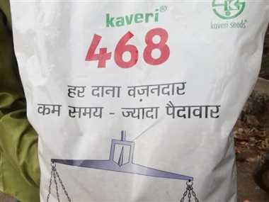 60 प्रतिशत बीजों में अंकुरण नहीं, किसानों ने की कलेक्टर से शिकायत