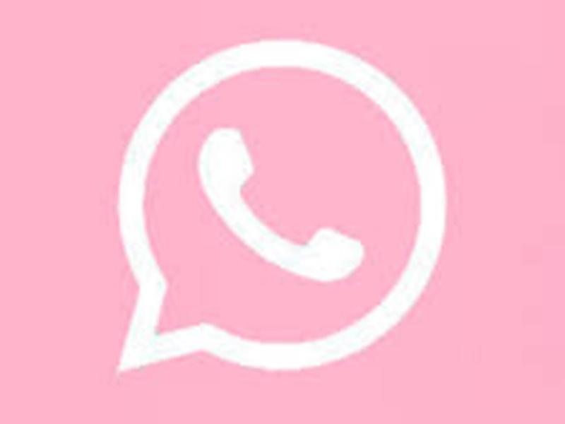 WhatsApp को गुलाबी रंग में बदलने की लिंक मिले तो भूलकर भी न करें क्लिक, हैक हो सकता है मोबाइल