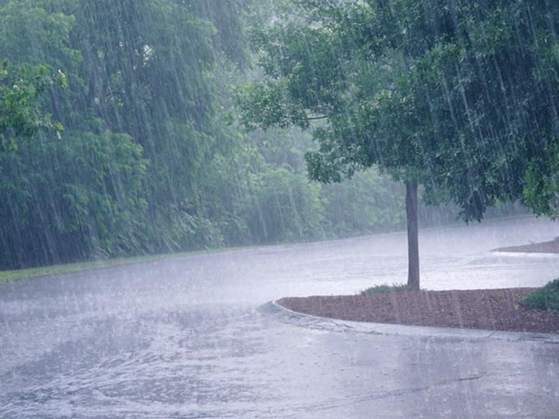 Weather News: मौसम विभाग ने दिल्ली, बिहार समेत इन राज्यों के लिए जारी किया अलर्ट, तेजी से बढ़ रहा मानसून