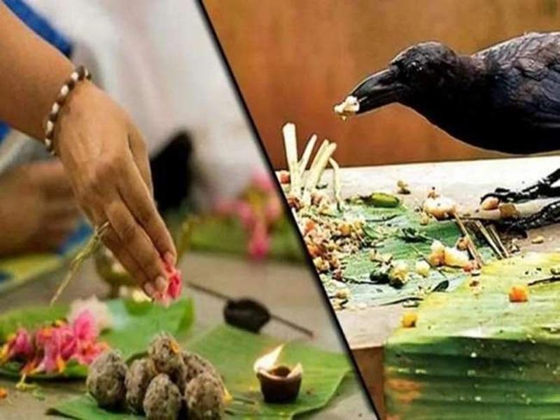 Pitru Paksha 2021: 100 साल बाद दुर्लभ संयोगों की साक्षी में श्राद्ध पक्ष, इन नियमों का पालन भी जरूरी