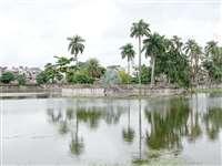 धमतरी शहर के तालाबों की बदलेगी सूरत, निगम ने राज्य शासन को भेजा पांच करोड़ का प्रस्ताव
