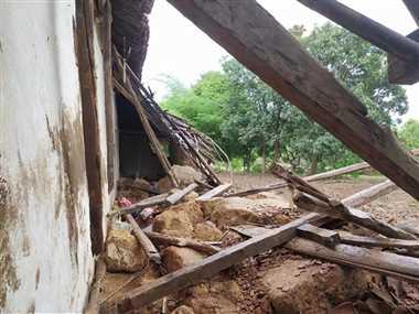 मरदेल में हाथियों ने मचाई तबाही, खेत, बाड़ी व आम के पेड़ों को पहुंचाया नुकसान