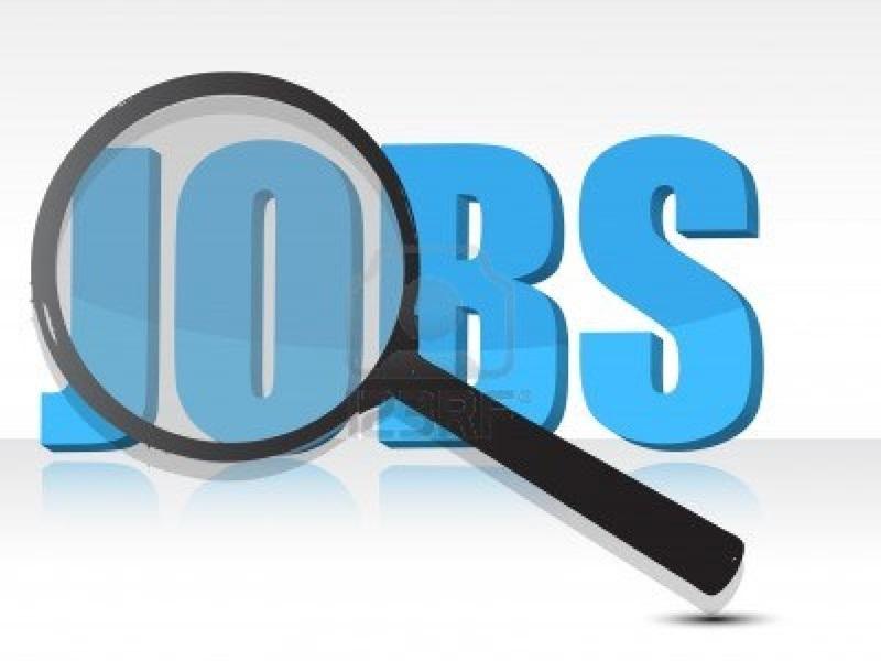 Job News : इस सेक्टर में निकलेंगी दिसंबर तक 50 हजार नौकरियां, खुद को रखें तैयार