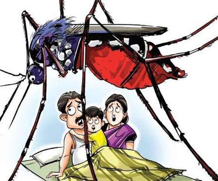 Dengue in Gwalior: शहर के नौ वार्ड डेंगू के हाट स्पॉट, इंतजाम बेदम,खतरा बरकरार
