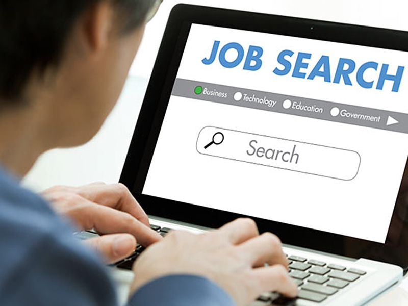 Job Search: Take care of these things while online searching for Naukari