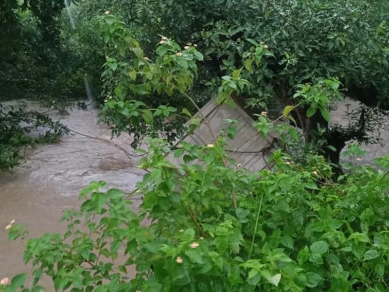 Rain in Raisen District : लोडिंग ऑटो सहित ड्राइवर नदी में बहा, देखें वीडियो