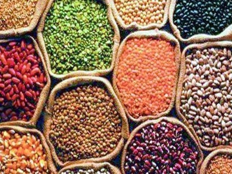 Indore Market : इंदौर में तुअर दाल हुई सस्ती, 100 रुपये घटे दाम, जानिये बाजार का अपडेट