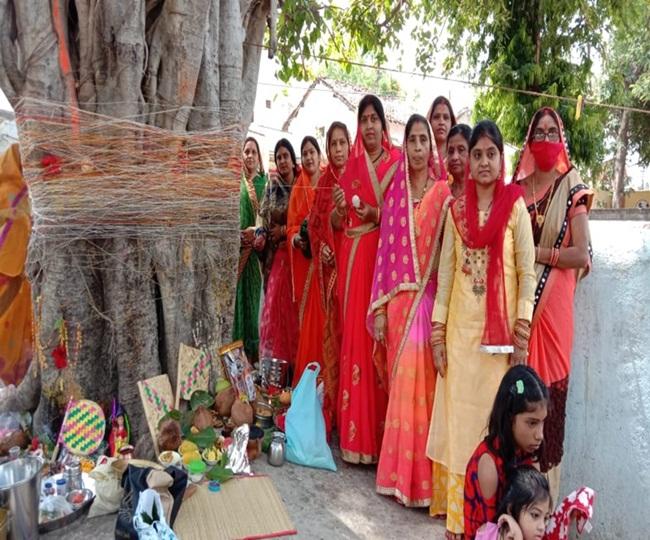 धमतरी : चिरायु होता है बरगद का पेड़