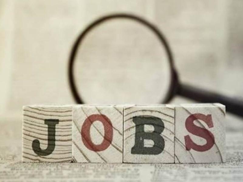 Employment In Chhattisgarh: रोजगार से जोड़ने ई-श्रेणी में 2013 युवा ठेकेदारों का पंजीयन