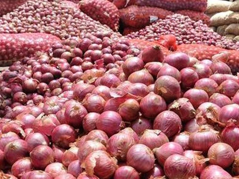 Onion Price Indore: जमीनी-आसमानी कीमतों पर लगाम के लिए इस बार खरीफ की प्याज का रकबा बढ़ाने की तैयारी