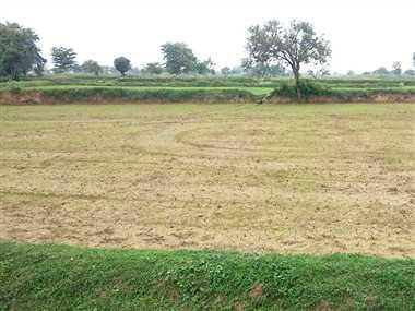 चिंतित किसानों ने गंगरेल बांध से मांगा पानी