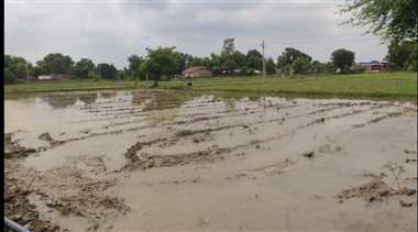 बारिश हुई तो खिल उठे किसानों के चेहरे , देर से सही पर भगवान ने सुन तो ली