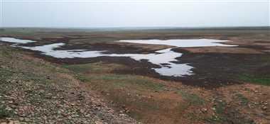 श्योपुरः बारिश के सीजन का सवा महीना बीतने के बाद भी रीते पड़े डैम और तालाब, किसान चिंतित
