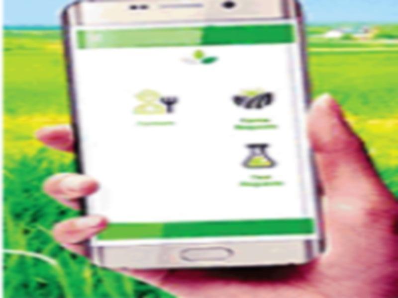 Gwalior Kisan News: उर्वरक एप में अपलाेड करें मिट्टी की रिपाेर्ट, फिर वह बताएगा आलू की खेती के लिए कैसी खाद डालना हाेगी