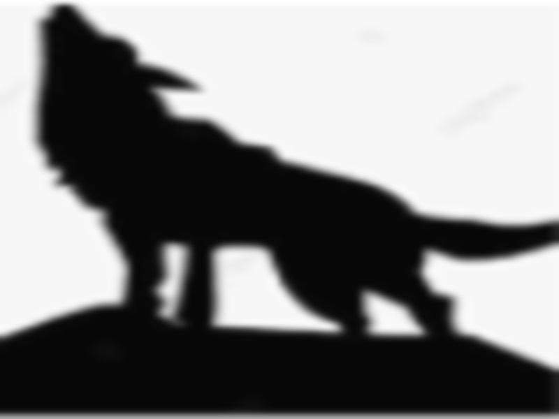 Wolf in Gwalior: मुरार नदी के किनारे पशुओं का शिकार, वन विभाग पंजाें के निशान देखकर बाेला-भेड़िया आया