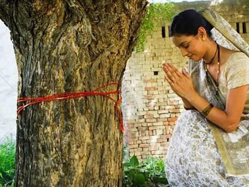 आंवला नवमी 2020: जानिए आज के दिन क्यों की जाती है आंवले के पेड़ की पूजा