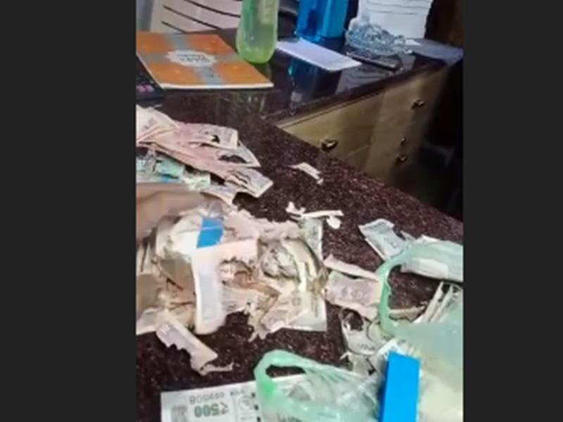 Bank Locker में पैसे रखें हैं तो चेक करते रहें, यहां दीमक खा गई 2 लाख रुपए, देखें Video