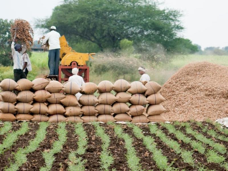 Farm Laws: नए कृषि कानूनों से आगे का एजेंडा: भरत झुनझुनवाला