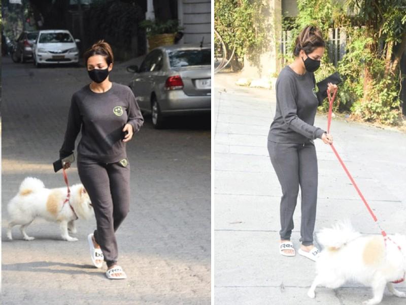 कोरोना कर्फ्यू में कुत्ते को घुमा रही थीं मलाइका अरोरा, लोग वीडियो बनाने लगे तो हो गई नाराज