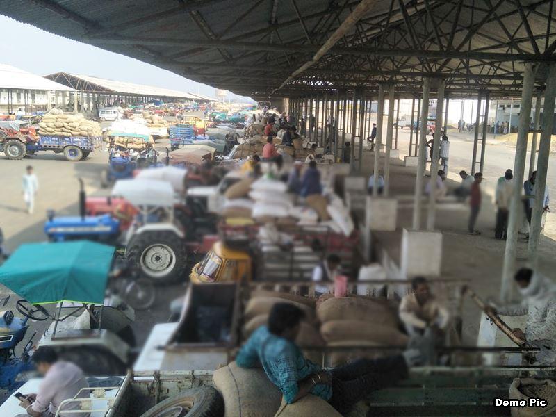 मध्य प्रदेश में दीपावली से मंडी शुल्क आधा फीसद, एमडी ने कहा- आदेश नहीं मिले