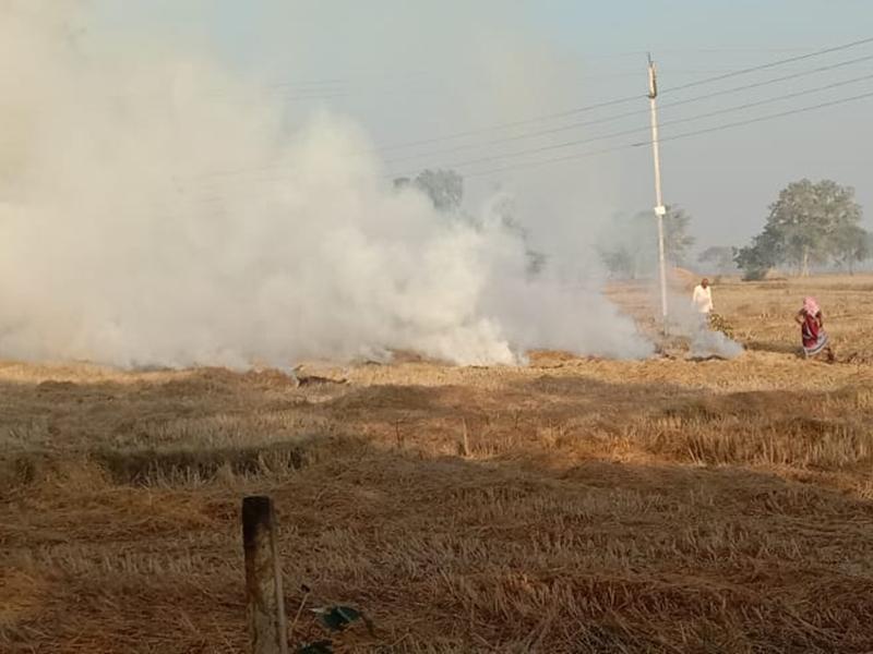 Durg News : दुर्ग जिले में फिर चलेगा पराली दान अभियान
