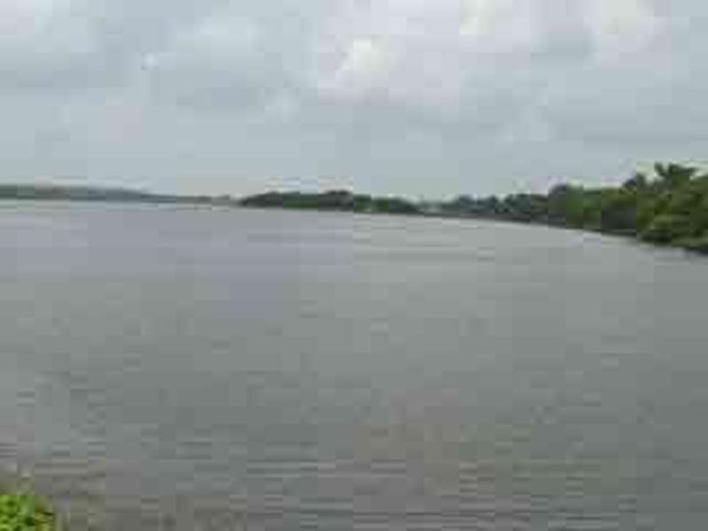 Indore News: इंदौर जिले के जल संसाधन विभाग के सभी तालाबों का होगा जीर्णोद्धार