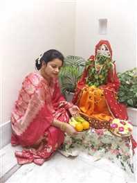दतियाः तुलसी के पौधे का देवी रूप में किया साज श्रृंगार