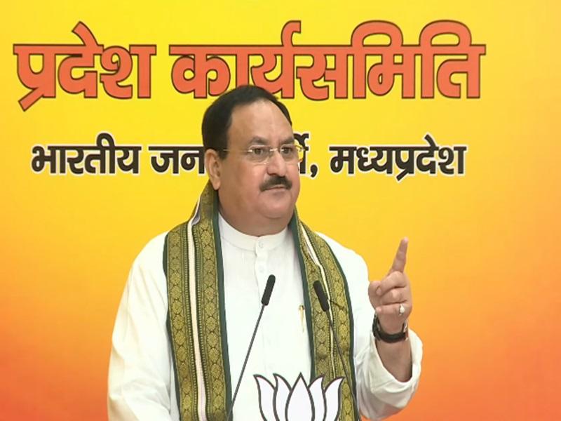 भाजपा के राष्ट्रीय अध्यक्ष जेपी नड्डा बोले- शिव 'राज' नंबर वन, प्रभारी मुरलीधर राव ने खारिज की MP में नेतृत्व में बदलाव की अटकलें